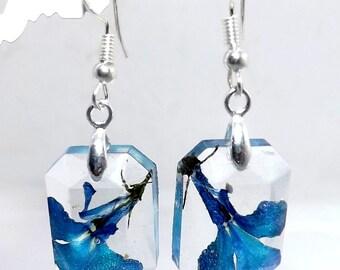 Silver earrings lobelia flower frozen in resin
