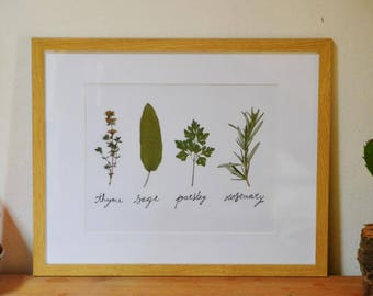 Pressed Herbs Wall Art, Real Pressed Framed Plants, Kitchen Decoration, Modern Home, Herbarium, Nature in your Home