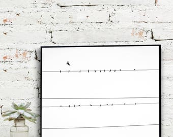 Instant Download Printable Art, Black and White Photography, Birds on a Wire Photo   {DIGITAL PRINT}