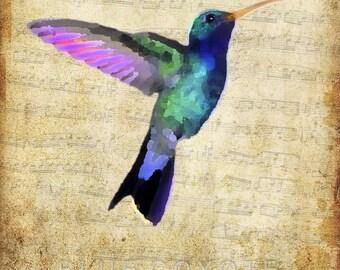 Hummingbird Print, Watercolor Print, Bird Watercolor Print, Hummingbird Art Digital Download Printable File #bc71