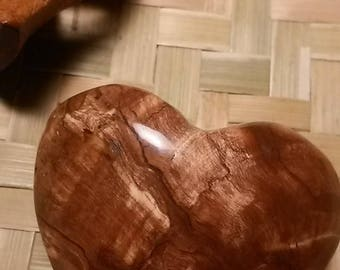 Fossilized wood BFC6 - 89,85 Gr heart
