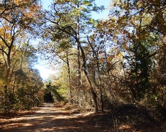 Follow The Dirt Road Canvas
