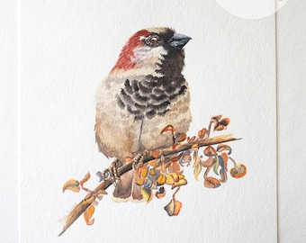 House Sparrow, Original Watercolor, Home Decor, Bird Art, Wall Art, Nature Painting, Watercolor Painting, Bird Painting (8x10in.)