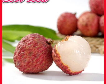 Heirloom 'Smile Of Princess' Litchi Seed, 5 Seeds/Pack, Organic Fruit Tree Litchi Chinensis Seed For Home Garden-Land Miracle