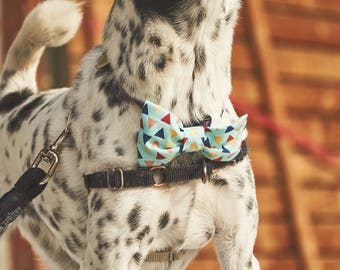 Dog Bow Tie | Explorer | Free Shipping to Canada