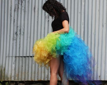 Adult colorful TuTu