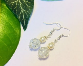 Sparkly Glass Beaded Drop Earrings