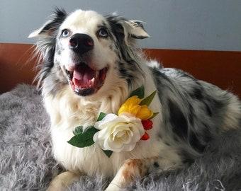 Pet flower collar, Pet wedding accessory, Dog collar, Dog flower accessory, Pet wedding, Dog flower wedding accessory, Rose pet collar, Dog