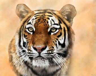 The Bengal tiger-Digital art