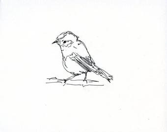 Sketchbook Sale - Bird #19 Original Ink Line Drawing - 8x10 Songbird Original Art