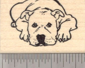 American Pitbull Terrier Dog Rubber Stamp, Staffordshire E21926 Wood Mounted