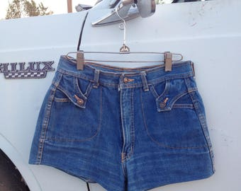 Vintage 70's Denim Shorts / High Waist Jean Hot Pants / Women 28