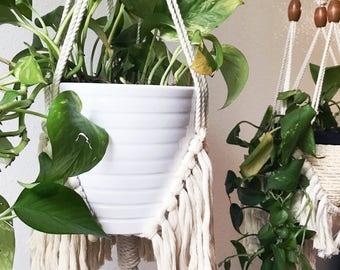 Fringey macrame plant hanger