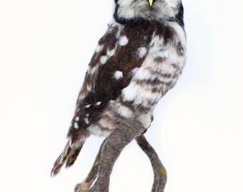 Custom Order, Hawk Owl And Pygmy Owl For Joel, Owl Art, Owl Sculpture