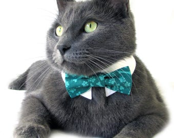 Teal Pawprint and Bones Bow Tie, Necktie, or Bow on a Shirt Style Collar for both Dogs & Cats