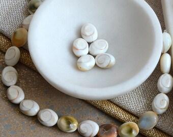 Oval Shiva's Eye Beads, Large Shiva Eyes Shell Beads, Operculum, Spiral Shell Beads, Natural Shell Beads, Pack of 5, HA17-0127