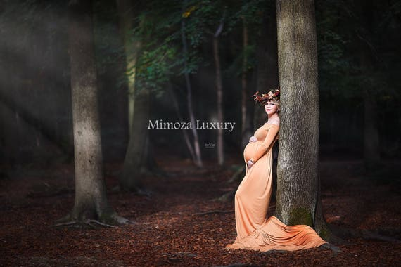 Maternity Gown Photography, Long Sleeves Maternity Dress, Maternity Photography Prop, Pregnancy dress, maternity photo prop, long sleeve
