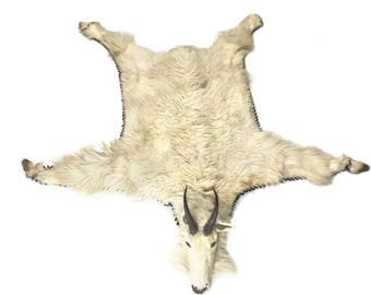 Vintage Real Mountain Goat Fur Rug With Taxidermy Head And Hooves
