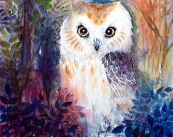 Owl Artwork Original Painting Watercolor Animal Painting Bird Art Saw whet Owl 11x10.5 in