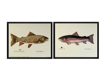 Set of 2 - Vintage Brook Trout & Steel Head Trout Art Print Illustration by Terri Blehm, c. 1994 SCAFA Tournabene, Fish Art, Fishing