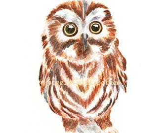 Baby Owl Print, Watercolor Owl, Saw Whet Owl, Watercolor Bird Print, Woodland Owl, Night Owl Art, Strigiformes Print, Cute Owl
