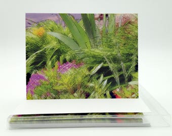 Boxed Blank Notecards: Whimsical Garden Boxed Set of 6