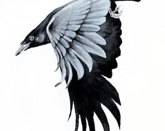 Crow, Original watercolors painting,bird, birds, animals, nature, wildlife watercolors,