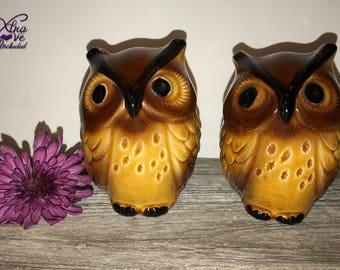 Vintage Owl Salt and Pepper Shakers, Brown Ceramic Owl Salt & Pepper Shakers