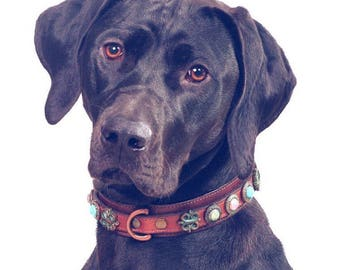Dutchiz leather dog collar Carthago