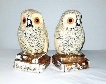 RESERVED for ccforever54** Do NOT Buy** Vintage OWL Bookends,Owl Bookends,Flocked Owl Bookends,Knowledge,Vintage Bookends,College Student