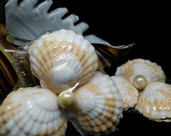 Sea Shell Bath Bomb Sets