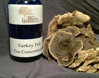 Tea Concentrates 3 pack!  Chaga, Reishi, Turkey Tail 2oz or 4 oz  Wild Harvested, Sustainable, Organic, Natural, Pure  Great Deal!