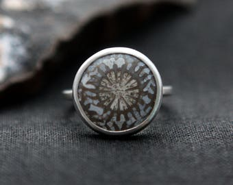 Fossilized Coral Ring - Sterling Silver and Genuine Fossil - Size 8