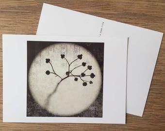 Postcard 'Lanterna Magica'