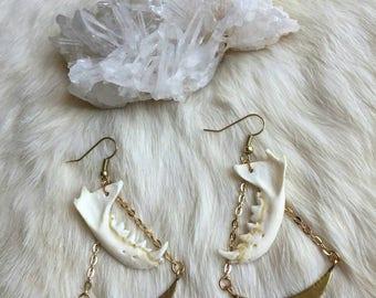 Golden Crescent Mink Jaw Bone Earrings