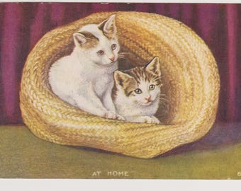 Antique Postcard, Kittens in Hat, At Home, Ephemera, Housewarming Postcard, Craft Supply, Scrapbook Supply