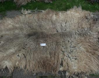 Spelsau raw fleece 2.1kg/4.63lb