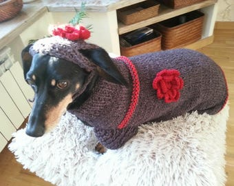 Unique handmade dog cloth