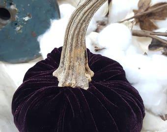 Medium Velvet Blackberry Purple Velvet Pumpkin with Real Pumpkin Stem