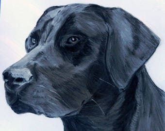 Custom hand drawn pet sketch in charcoal from your photo.  Unframed.
