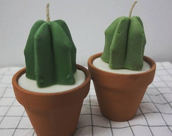 A Set of 2 Mini Cactus Candles