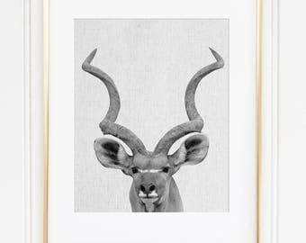 Antelope Print, Antelope Wall Art Print, Great Kudu Printable, African Animal, Black And White Animal, Modern Minimalist, Animal Home Decor