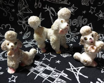 Retro Poodles