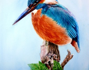 Kingfisher on a Tree Stump (print of original watercolour painting)