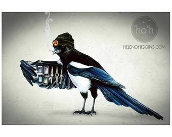 Shifty Magpie - Art Print