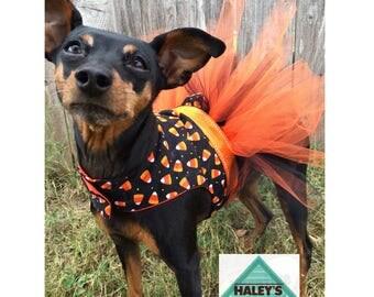Candy Corn Halloween Dog Costume   Dog TUTU dress   Small Dog Costume   Large Dog Costume