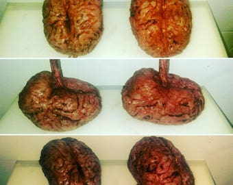 Realistic bloody silicone brain prop