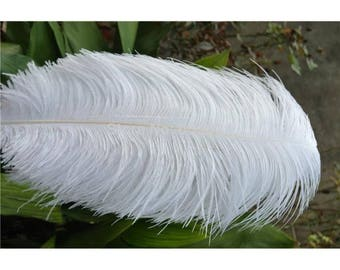 White ostrich feathers 24-26 inch / 60-65CM 150 pieces