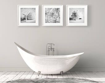 Coastal Decor, Set 3 Prints, Starfish Art, Sea Shell Prints, Bathroom Wall Art, Beach House Decor,  Sea Shell Wall Art, Nautical Art,
