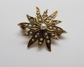Antique 14K Yellow Gold Seed Pearl Starburst Pin / Brooch
